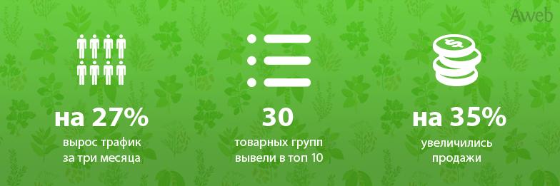 kejs_продвижение-интернет-магазина-ermercenter-com-action